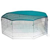 Bunny Cage Test