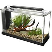 Aquariums Fluval Spec V Aquarium Kit, 5-Gallon, Black