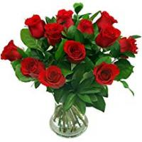 Clare Florist 12 Red Roses True Romance Fresh Flower Bouquet - Premium Fresh Roses Hand Arranged by Expert Florists