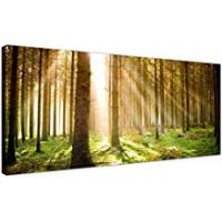 Prints Wallfillers Modern Canvas Prints of Forest Trees for your Dining Room - Large Landscape Wall Art - 1042